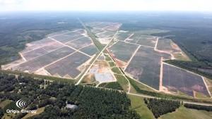 Twiggs Solar, Georgia project image
